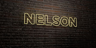 NELSON -Realistic Neon Sign on Brick Wall background - 3D rendered royalty free stock image Royalty Free Stock Photos