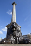 Nelson's Column in Trafalgar Square Royalty Free Stock Image