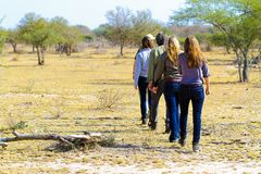 Tourists on Safari in a Game Reserve royalty free stock photography