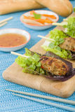Nem Nuong Xa - Vietnamese minced pork sausages Royalty Free Stock Photos
