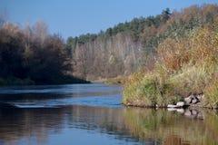 Neman-Fluss im Fall Lizenzfreie Stockfotos