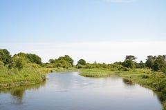 Neman river Royalty Free Stock Photo