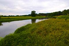 Nemanrivier en groene weiden in Wit-Rusland royalty-vrije stock foto's