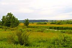 Nemanrivier en groene weiden in Wit-Rusland royalty-vrije stock afbeelding