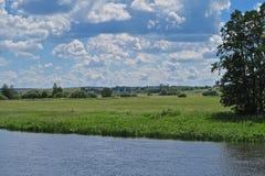 Nemanrivier en groene weiden in Wit-Rusland stock foto's