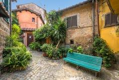 Nemi, de Provincie van Rome, Lazio, Italië Stock Fotografie