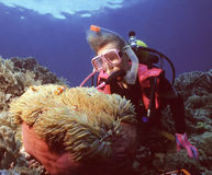 Nemo's Home. Woman diver and an anemone with anemone clownfish, Maldive Islands stock image