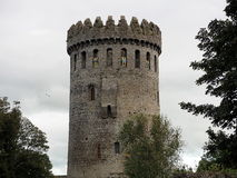 Nenagh城堡爱尔兰 免版税库存图片