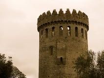 Nenagh城堡爱尔兰 免版税库存照片