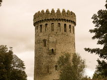 Nenagh Castle Ιρλανδία Στοκ Φωτογραφία