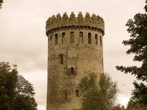 Nenagh-Schloss Irland Stockfotografie