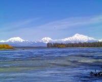 Nenana river with Denali range. Nenana River with Denali Mountain Range Royalty Free Stock Photography