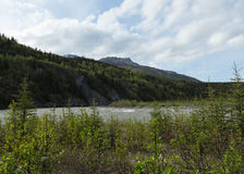 Nenana River Landscape Royalty Free Stock Photo