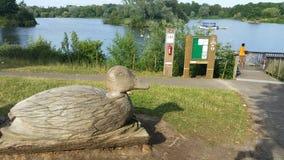 Nene park Peterborough Zdjęcie Royalty Free