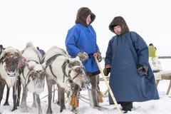 Nenets bergers de renne de jour à festival national «sur la péninsule de Yamal, Tarko-vente, le 28 mars 2015 Photographie stock