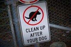 Nenhum cão Poo Foto de Stock