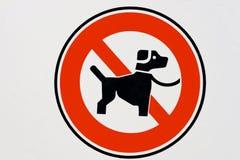 Nenhum cão. Imagens de Stock Royalty Free