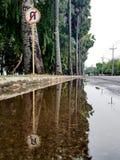 Nenhum sinal da inversão de marcha na rua rural com reflexão na água registrada Foto de Stock Royalty Free