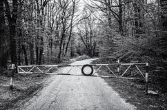 Nenhuma entrada ao trajeto de floresta, incolor Imagens de Stock