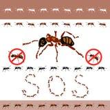 Nenhumas formigas na casa ilustração do vetor