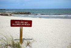 Nenhuns animais de estimação no sinal da praia Foto de Stock Royalty Free
