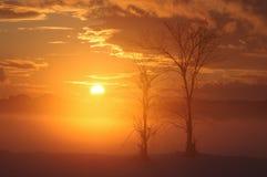 Neolatino al tramonto immagine stock libera da diritti