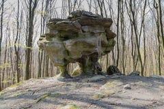 Neolithischer enormer Stein im Wald Lizenzfreies Stockfoto
