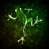Neon abstract  frog Stock Photo