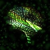 Neon brain, abstract illustration. Stock Images