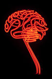 Neon brain. Neon shaped in the form of a human brain Royalty Free Stock Image