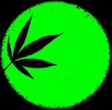 Neon bright green marijuana ganja circle grunge messy background design Royalty Free Stock Photo