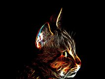 Neon cat on a black background Stock Photo