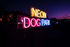 Neon Dog Park Sign stock photo