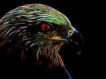 Neon eagle on black background. Closeup Royalty Free Stock Photo