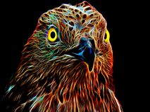 Neon eagle on black background. Closeup Royalty Free Stock Photography