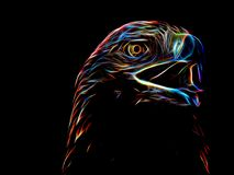 Neon eagle on black background. Closeup Stock Photos