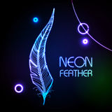 Neon feather. Abstract decorative background with neon feather Stock Photography