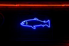 Neon fish. Neon sign shaped like a fish against a wooden wall Stock Image