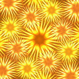 Neon flower. Abstract image - neon flame flower Stock Photography