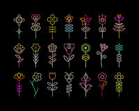 Neon Flowers Stock Photography
