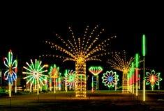 Neon fluorescent park Royalty-vrije Stock Foto's