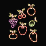 Neon fruits silhouette icon Royalty Free Stock Images