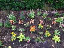 Neon Garden Stock Photos