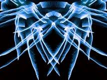 Neon-gevleugelde spin vector illustratie