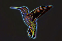 Neon Hummingbird. In Flight On Black Background Stock Photo