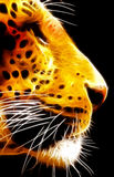 Neon Isolated Close-up Leopard Face Side View VB Royalty Free Stock Photography