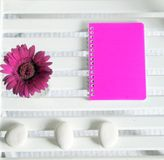 Neon notebook Stock Image