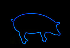 Neon Pig Shaped Sign Royalty Free Stock Image