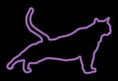 Neon Puprple Cat Stretching Royalty Free Stock Images