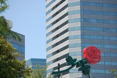 Neon Rose sign and office building in Portland, Oregon. This neon rose sign is a symbol of Portland, Oregon`s nick-name, `City of Roses`. It is flanked by some stock photo